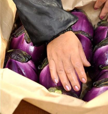 Tuscan Rose Eggplant