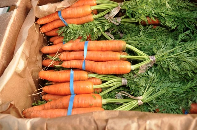 carrots-in-box