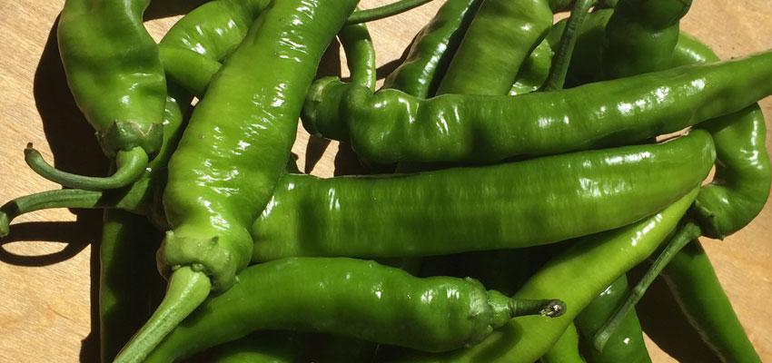 serrano_peppers