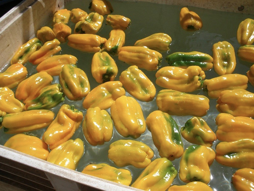 yellow-peppers-bath